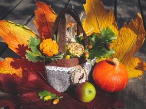 autumn-3691595_1920